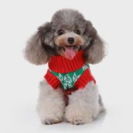 Pet Clothes Winter 06-1285