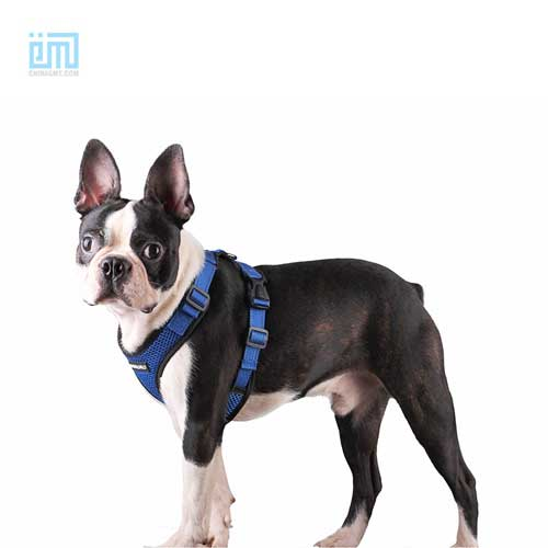 wholesale custom adjustable dog chest harness 109-0002-4